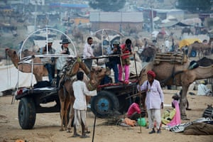 Camel fair: Tourists take photographs of camel traders