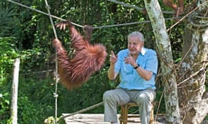 Attenborough: 60 Years in the Wild.