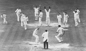 Cricketers Celebrate