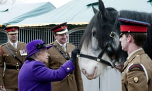 Queen Elizabeth inspects a horse as she meets members of the Household Cavalry during her visit to Combermere Barracks in Windsor. During her visit to the barracks the Queen saw troops preparing uniforms ahead of the visit by the Emir of Kuwait, met with soldiers and inspected horses.