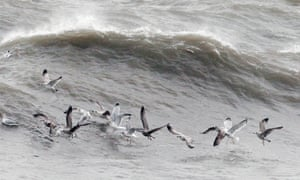 Sea Gulls battle against high winds in Howth Harbour in Dublin as strong winds and floods hit the east of the country.