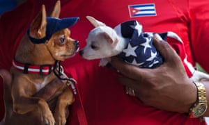 A man holds two chihuahua dogs, one dressed in a U.S. flag, at the Fall Canine Expo in Havana, Cuba.