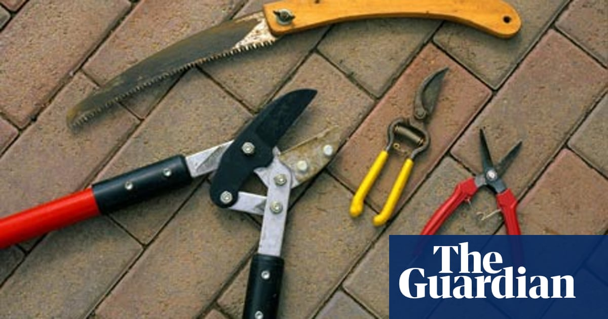 Alys Fowler Gardening Tools Life And Style The Guardian