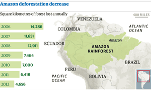 Map: Amazon deforestation decrease