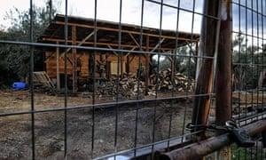 Wood poacher's warehouse