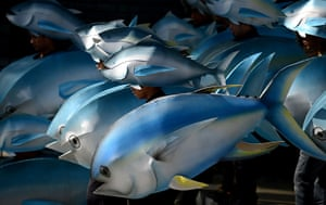 24 hours in pictures: Greenpeace wearing cardboard tuna cutouts