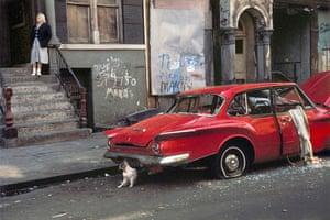 Cartier-Bresson: Cat next to red car, New York, 1973 by Helen Levitt