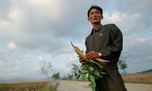 A farmer in the South Hwanghae province of North Korea