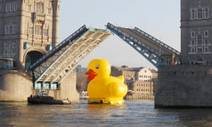 Duck's progress: A giant 50 foot rubber duck floats down the Thames under Tower Bridge
