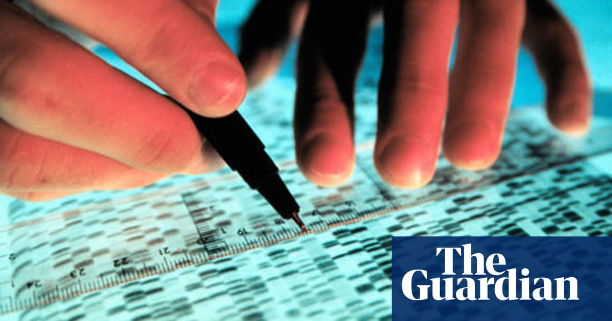 So what does a market analyst do, exactly? | Guardian Careers | The