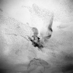 Big Picture: Starlings: Black and white photograph of starlings in the sky