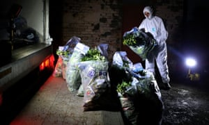 Strathclyde Police officers load drugs believed to be cannabis in bags into a van after it was found at a commercial premise in Rutherglen, Scotland after a drugs raid.