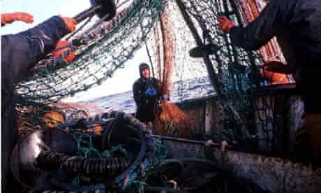 INDUSTRY, FISHING, NORTH SEA, 1995