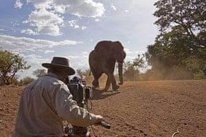 BBC Africa : BBC cameraman filming in Africa