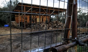 A wood poaching warehouse in central Greece. Illegal logging has taken on epidemic proportions this year