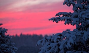 A red sky a night.  he crimson red sky is pictured through snow-covered foliage in Wisconsin, USA. The governor  of Wisconsin has declared a state of emergency as some areas are expecting up to 16 inches of snow and blizzard conditions.