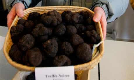 French truffle farmer