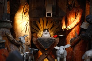 24 hours in pictures: A cat sits at the nativity scene outside a church
