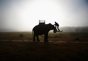 24 hours in pictures: Chitwan National Park