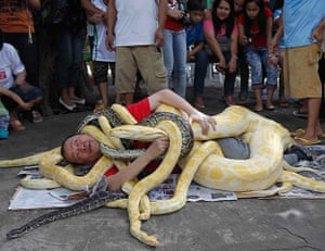 24 hours in pictures:  show celebrating the coming Chinese year of the snake