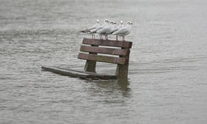 Flooded park bench in Pangbourne