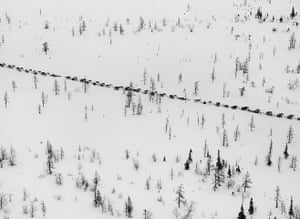 Salgado: The caravan of sledges prepares to cross the Ob River