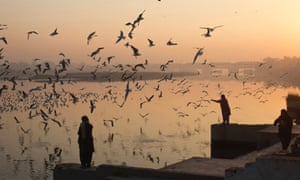 A woman feeds the migratory birds on the banks of Yamuna river in the old quarters of Delhi, India.