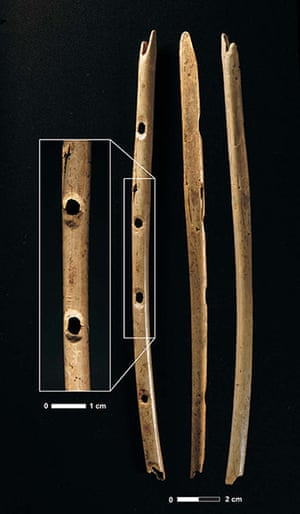 Ice age artifacts: A primitive flute made from the wing bone of a griffon vulture