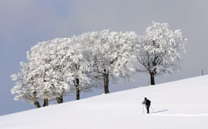 Cold snap continues: A cross country skier near Freiburg, southwestern Germany