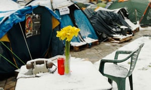 Daffodils on a snow covered table at the Occupy London camp