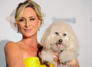 "Golden Collar awards: ""Real Housewives of New York"" star Morgan"