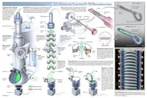 Science: 2011 Science/NSF International Science & Engineering Visual Challenge