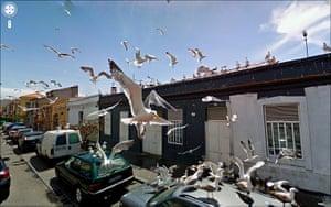 9 eyes google streetview: Matosinhos, Portugal