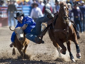 24 hours in pictures: Jason Miller participates in the steer wrestling competition, Arizona