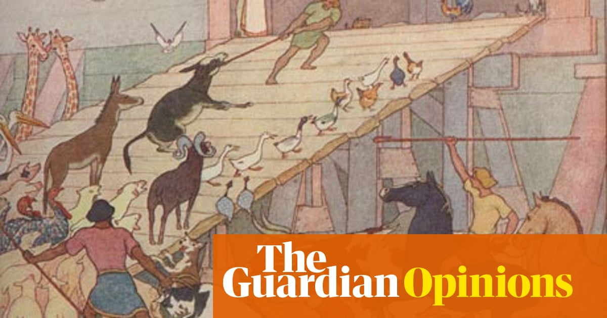 Evolution and divine creation: where's the contradiction? | Andrew