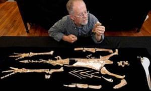 Ewan Fordyce, a professor of geology, examines a composite skeleton of giant penguin Kairuku
