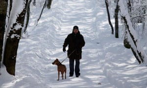 Dogwalker in Stavropol