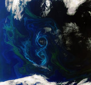 Satellite eye on earth: a phytoplankton bloom swirls a figure-of-8 in the South Atlantic Ocean