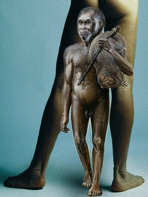 Human evolution: Back View of Nude Man Flexing