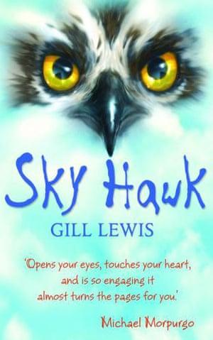 Book Covers: Sky Hawk book cover