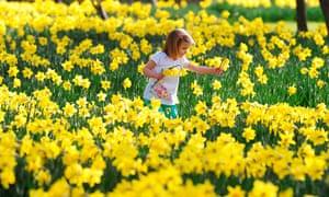 Spring: Spring weather Mar 15