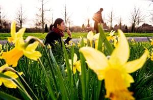 Spring in Regent's park