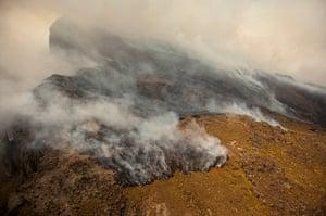 Week in wildlife: Fires burn across the slopes of Mount Kenya