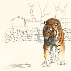 Vicky White's Can We Save the Tiger?