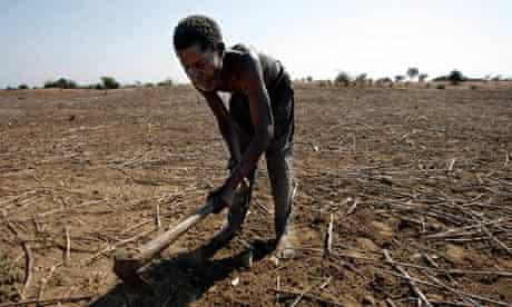 Farming in Malawi
