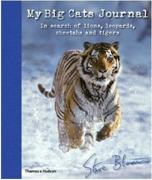 Easter Books (8-12): Easter Books for Children (8-12)  - My Big Cats Journal
