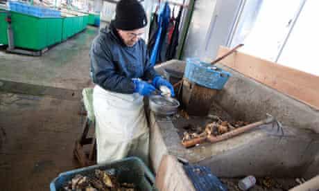Miyagi Prefecture Fisherman's Co-operative