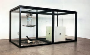 Damien Hirst: A Thousand Years