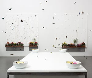 Damien Hirst: In and Out of Love (White Paintings and Live Butterflies)