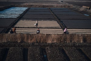 From the agencies: North Koreans farmers work in the fields along the railway line